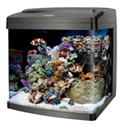 Tank Aquarium Products
